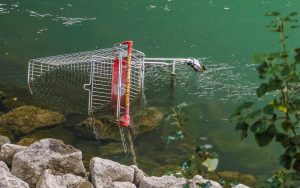 An Abandoned Shopping Cart. Someone send someone an email.